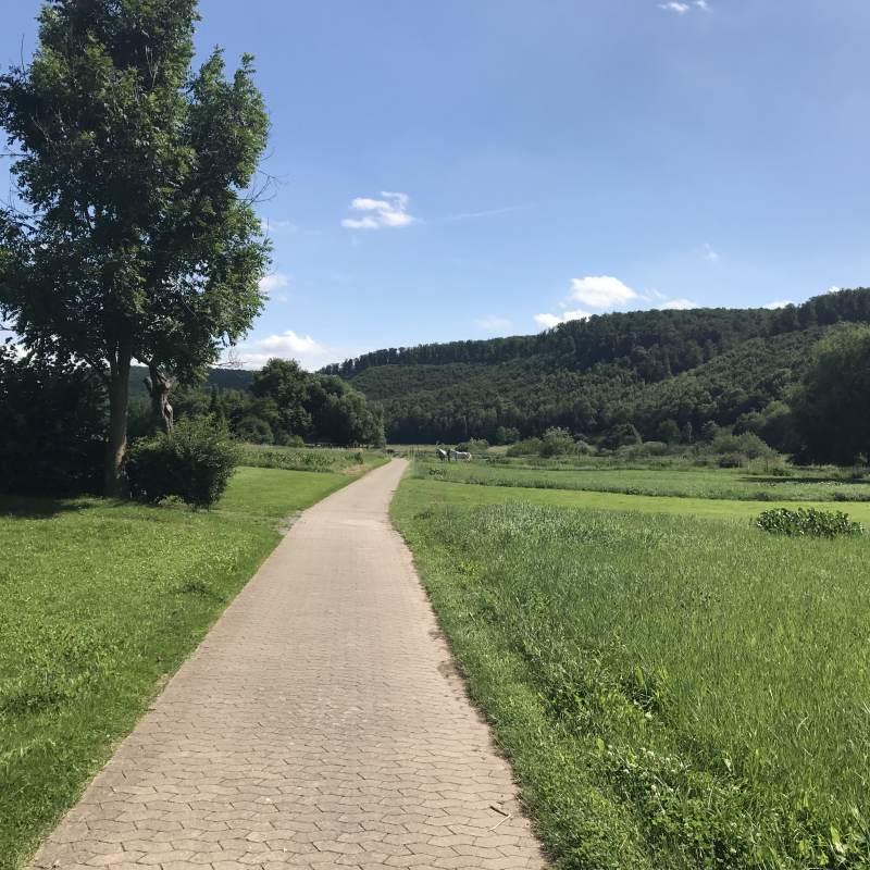 Symbolbild Landschaftsradweg