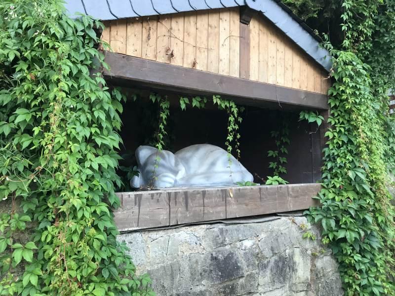 Abschied von der grauen Katze 2