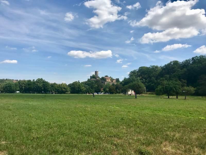 Blick auf Burg Schönburg