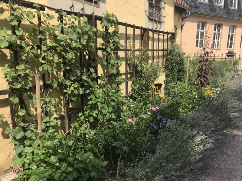 Idylle im Garten