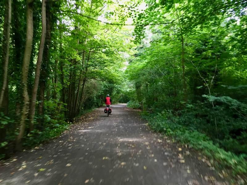 Grüne Waldwege charakterisieren die heutige Etappe