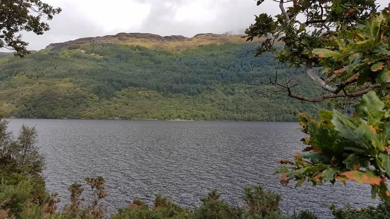 Loch Lomond aus dem Zug