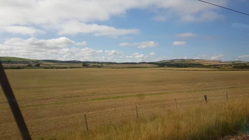 Wiesen und Felder aus dem Zug