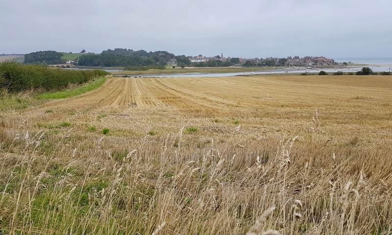 Blick zurück auf Alnmouth
