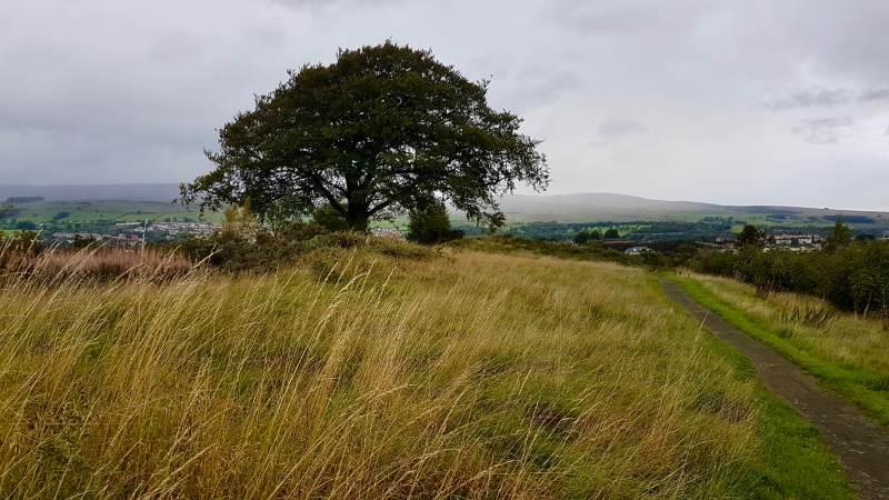 Oberhalb von Kilsyth