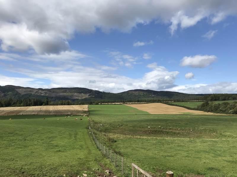 Blick in die Hügel