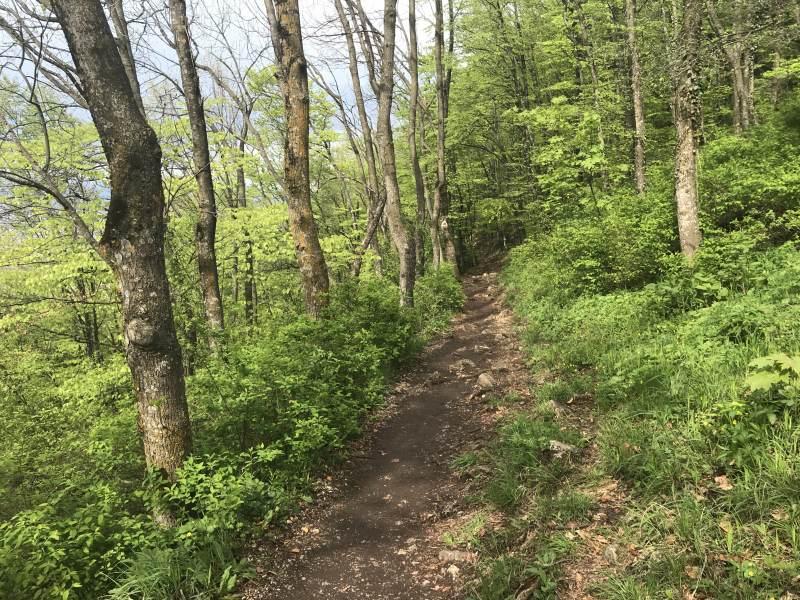 Der rustikale Weg ins Tal